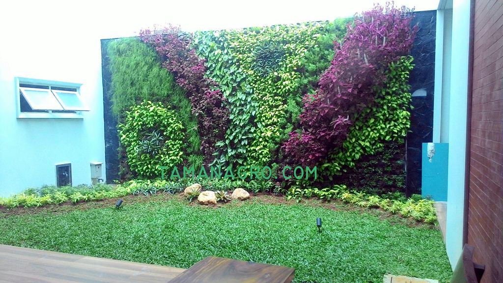 vertikal garden rumah bintaro